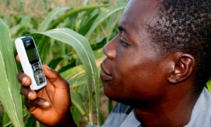 Mobile_Ghana_Farmer_Audienc_0.jpg
