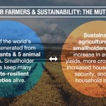 Why Agriculture Traceability Matters to Companies, Consumers and Communities
