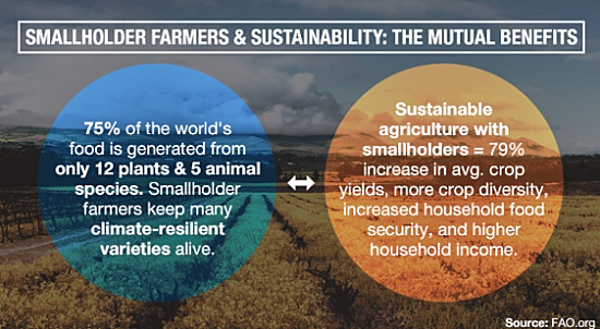 farmer-traceability